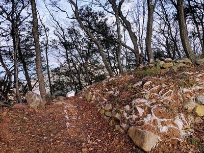 本丸虎口北側の石垣