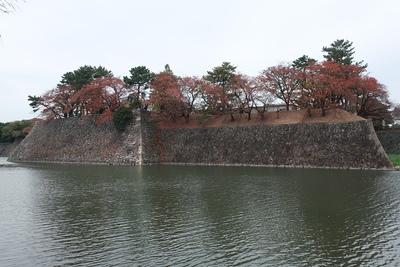 西側の石垣と水堀