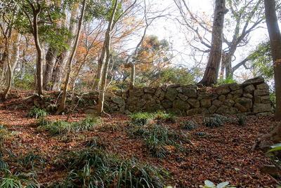 相畑城戸跡の石垣②