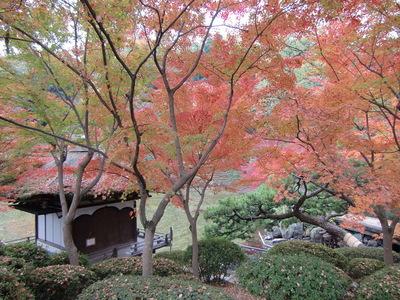 西の丸紅葉渓庭園