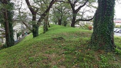 天寧寺町土塁を上から見る