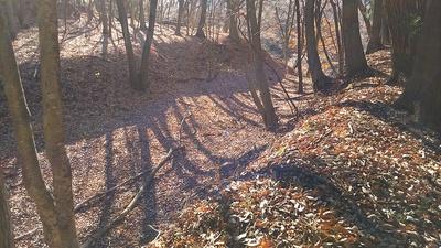 本丸跡~三の丸西跡の堀切を本丸跡の土塁上から見る