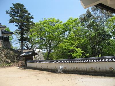 本丸東御門と土塀