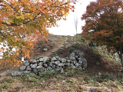 紅葉と石垣