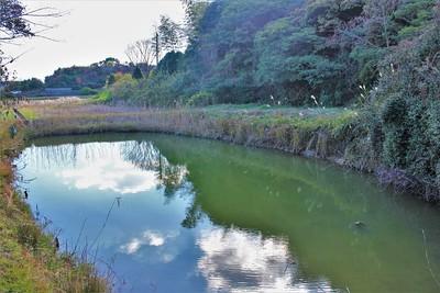 居館・堀跡(北東側)