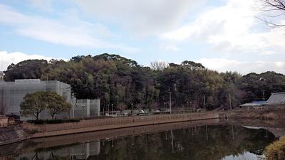 許斐山城 遠景