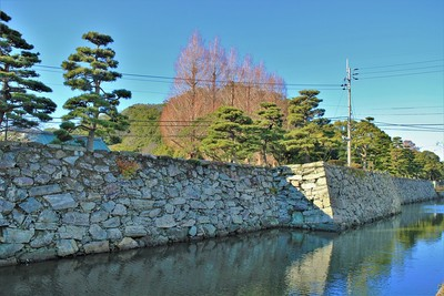 徳島城東側石垣と屏風櫓跡石垣(東側)