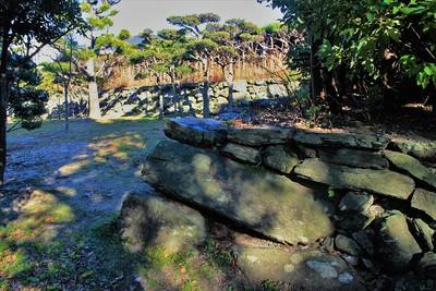 西の丸石垣(西側)