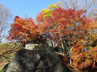三段櫓石垣と紅葉