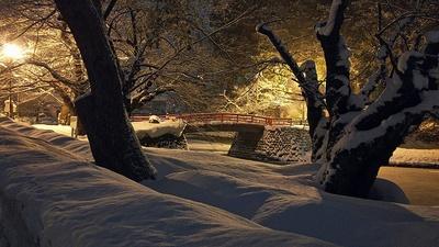 ライトで照らされた菱門橋(2019上杉雪灯篭まつり)