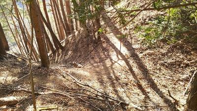 本丸跡から5本目の竪堀