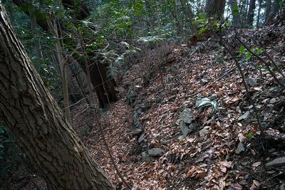 太鼓曲輪の第三堀切付近の石積