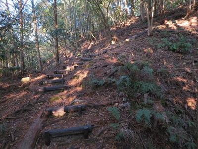 土橋状の坂