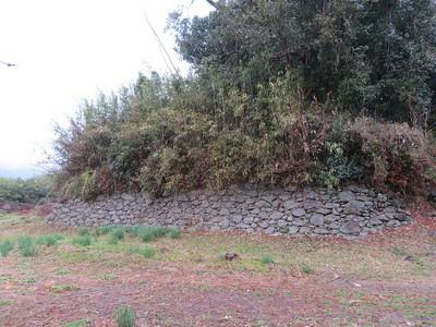 城山麓の石垣