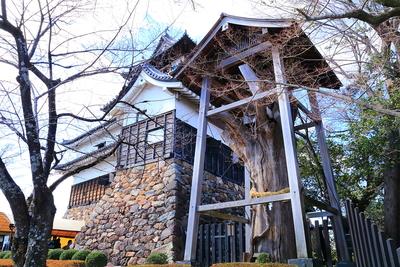 大杉様と付櫓