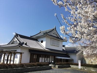 桜と備中櫓