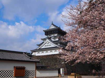 天守と桜①
