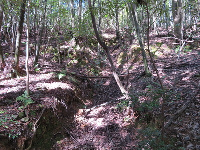 南側一番下の横堀に注ぎ込む竪堀