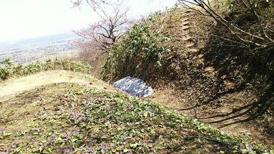 本丸跡(右側)~米蔵跡(手前)の堀切と