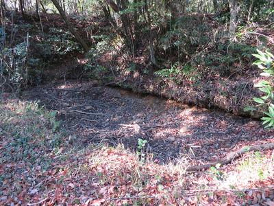 詰西ノ段の池跡