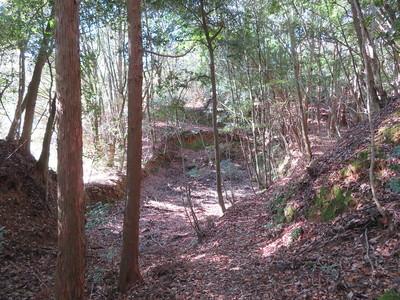 西尾根との大堀切付近の池跡
