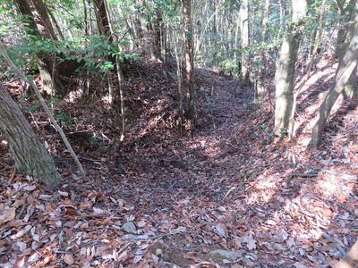 茶臼ケ森周辺北側の竪堀