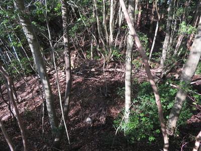 茶臼ケ森周辺北側尾根の堀切と土橋