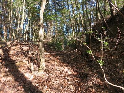 茶臼ケ森周辺北側尾根の二重堀切
