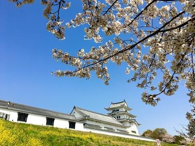 桜まつり前日