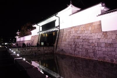 東大手門(桜まつりライトアップ)