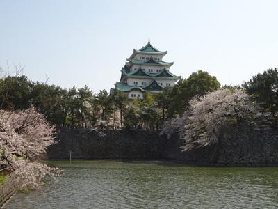 桜と天守其の四