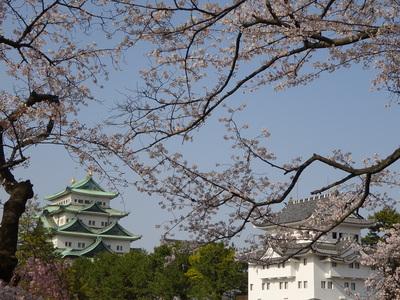春の西南隅櫓と天守