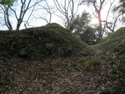南の丸の石垣と堀切