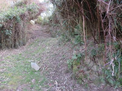 谷間から権現丸への道