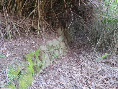 谷間から権現丸への道脇の石垣1