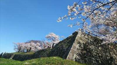 天守台と本丸跡西側の石垣