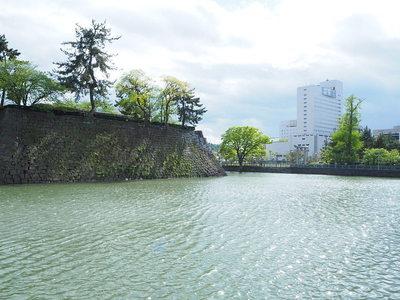 堀と本丸石垣跡(北側から)