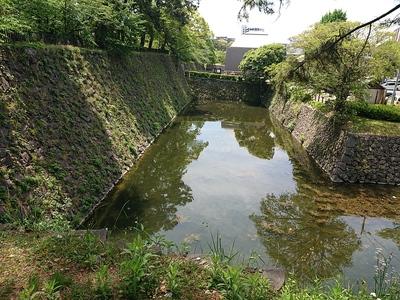 西側石垣と水堀