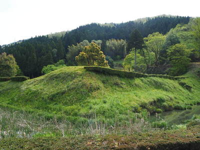朝倉義景館跡の土塁