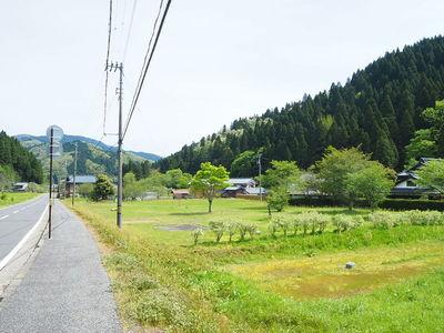 朝倉景鏡館跡
