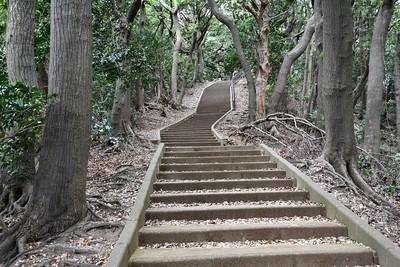 金ヶ崎城からの登城道