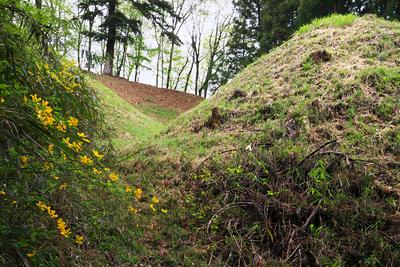 竪堀の底から二の丸(右)と本丸を見上げる