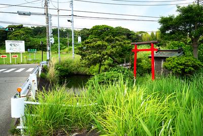 三の丸堀跡の弁天池