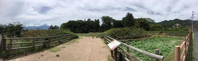 大手の水堀と土塁