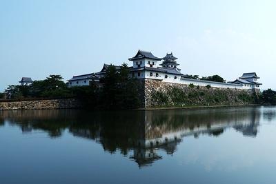 城址(北側から)