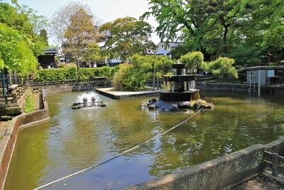 三斎池(南側)