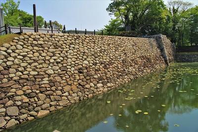 本丸石垣(南側)と水堀