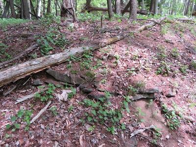 土塁下の石積