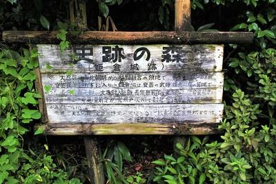 史跡の森(姫倉城跡)