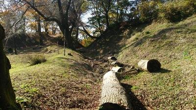 二ノ丸跡の土塁と横堀